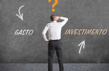 Controle de Pragas na cana-de-açúcar: Gasto ou Investimento?