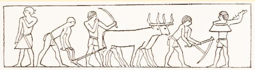 Figura 1- Arado de boi e foices usados na mesopotâmia